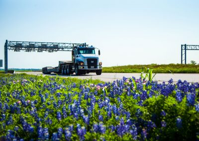 sh130bluebonnets10-(1-of-1)
